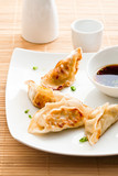 closeup of fried gyoza with soy sauce
