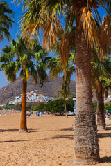 Beach Teresitas in Tenerife - Canary Islands