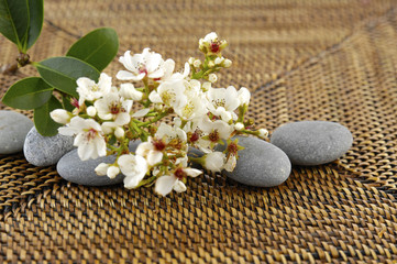 Lying down bunch of spring flower with stones on mat