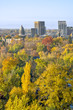 Boise Idaho in the Autumn