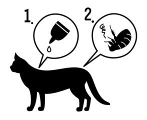 猫のノミ退治