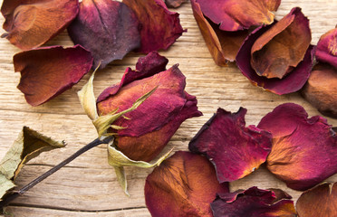 Dry red roses on old wooden background