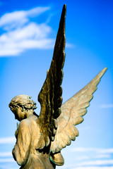 angelo di bronzo - bronze angel