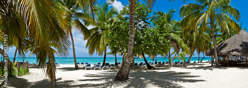 canvas print picture Saona03