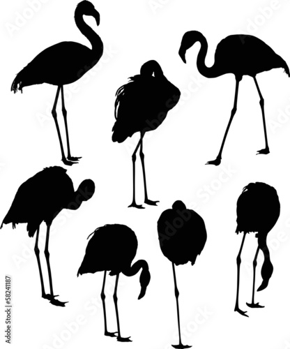 set of seven flamingo silhouettes isolated on white