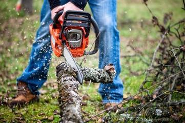 Lumberjack worker in full protective gear cutting firewood