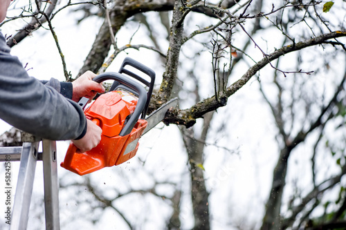 a lumberjack worker cutting branches from tree for fire wood