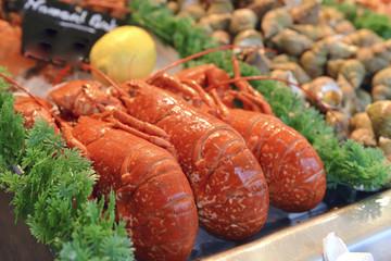 Cervical lobster