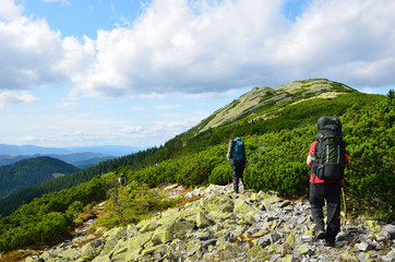 Tourists hiking in the Carpathian mountains