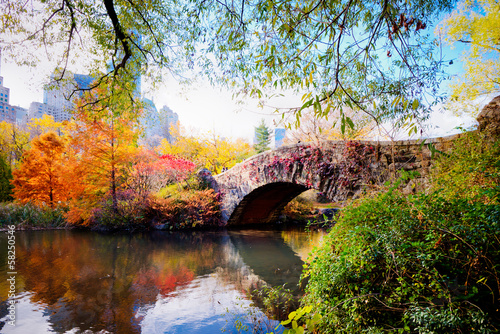 Autumn in Central Park, New York Poster