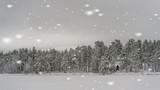 Grayscale winter landscape with snowflakes falling