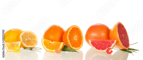 Lemon, orange and grapefruit in a section