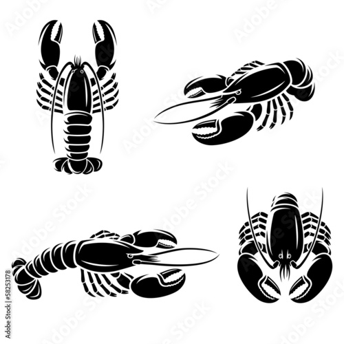 Lobster set. Vector - 58253178