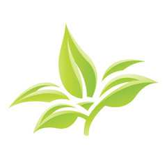 Green Glossy Leaves Icon