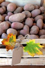 Bio-Kartoffelkiste