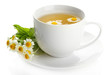 Cup of herbal tea with wild camomiles and mint, isolated