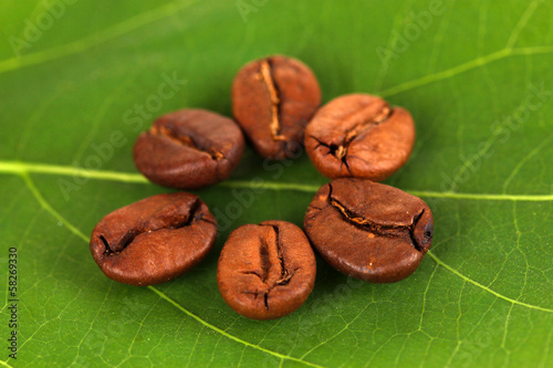 Coffee grains on green leaf close-up