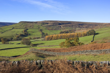 north york moors autumn