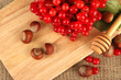 Red berries of viburnum with nuts on sackcloth background