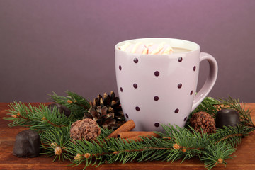 Cup of hot cacao with chocolates and fir branches