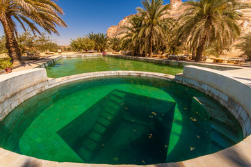 Fresh water spring pool under palm trees in a desert oasis