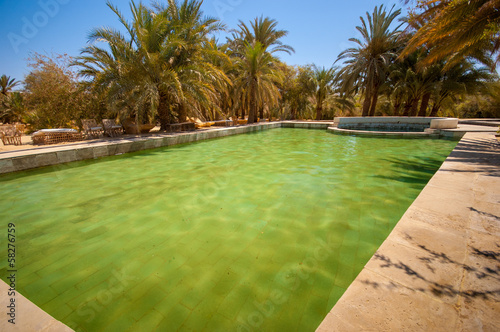 Swimming pool in a desert oasis in Egypt