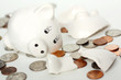 Leinwanddruck Bild - Broken Small Piggy Bank Surrounded by Spilled Coins