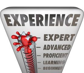 Experience Measurement Expert to Novice Level