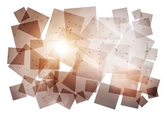 birds sun collage