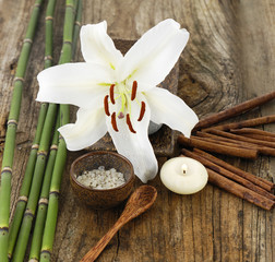 candle ,spoon, cinnamon,lily flower, salt in bowl