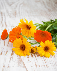 calendula bouquet