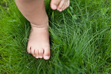 Small cute baby feet on the grass.