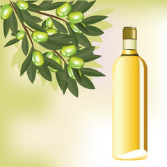 Olive oil and branch on abstract background