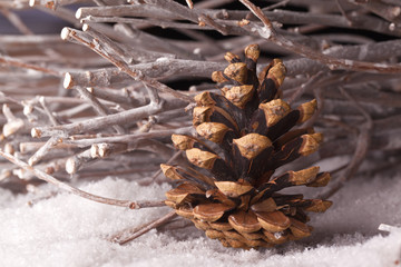 pine cone and wooden branches in snow