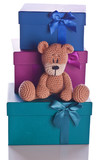 christmas teddy bear with gift box