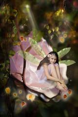 Sweet little fairy