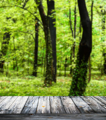 Beautiful forest and wooden floor background
