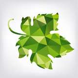 Grape green leaf in polygon style