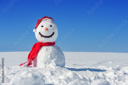 canvas print picture snowman