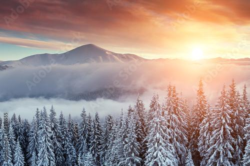 Fototapeten,landschaft,berg,weiß,winter