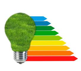 Glühbirne mit Wiese und Effizienzklassen