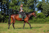 Horse's allure: canter