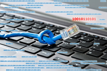 Netzwerkkabel Schadcode Virus