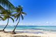 Tropical Beach at Le Moule, Guadeloupe Island