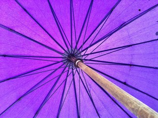 Umbrella background