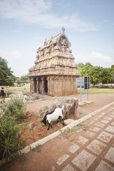 Ancient Ganesh Ratha Temple at Mahabalipuram, Kanchipuram District, Tamil Nadu, India