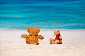 Teddy Bear trying to reconcile with his friend.
