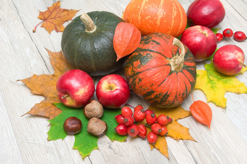 Pumpkins, apples, ripe berries rose hips and chestnuts on wooden