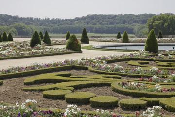 Jardin du château de Versaille