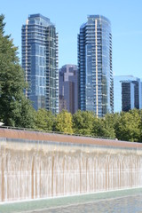 Bellevue Washington Downtown Park